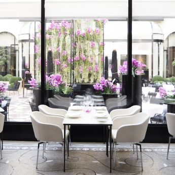L'Orangerie, Four Seasons, Paris, restaurant, gastronomie, David Bizet, Maxime Frederic